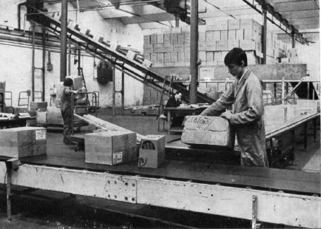 Goods on their way to the railhead in the original Woolworths Distribution Centre in Castleton in the period 1967-1971