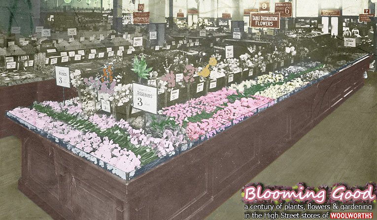 Blooming good - 100 years of flowers, bulbs, seeds and gardening in the High Street stores of F.W. Woolworth